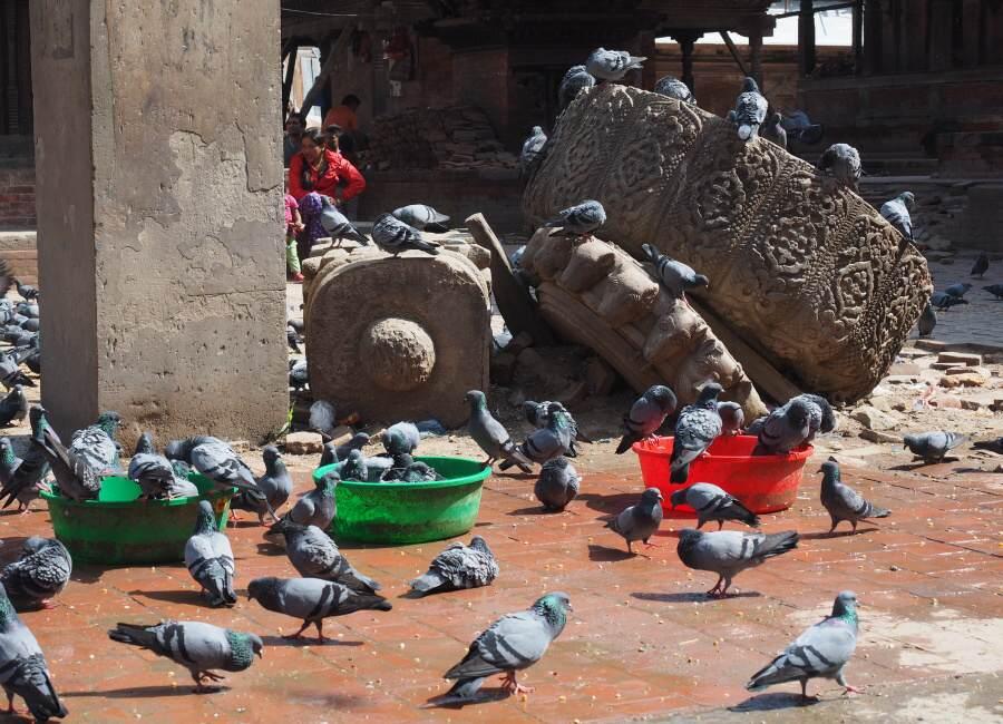 Nepali Seznamka v kathmandu qld datování